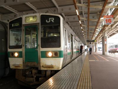 鉄道車両紹介 - 在来線(電車)