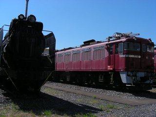 DSCN7980.JPG