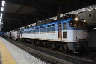 DSC_6916.JPG