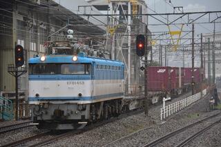 DSC_7428.JPG