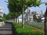 Haisen-ato(2).JPG